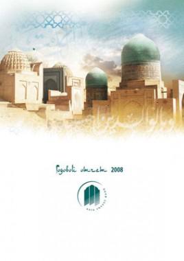 Годовой отчет 2008 Азия-Инвест